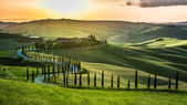 Sunset over the winding road with cypresses in Tuscany — Stock Photo