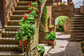 Old town full of flowery porches in Tuscany — Stock Photo