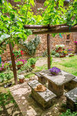 Garden full of flowers and vines in Tuscany — Stock Photo