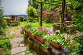 Garden in the city full of flowers — Stockfoto