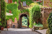 Ancient city overgrown with ivy in Tuscany — Stock Photo