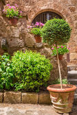 Beautiful stone porch full of plants in the old town — Stock Photo