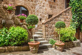 Stone entrance to the ancient house full of plants — Stock Photo
