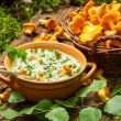 Freshly collected mushrooms in the woods and cooked with cream — Stock Photo #49884053