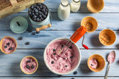 Preparing homemade fruit ice cream — Stock Photo