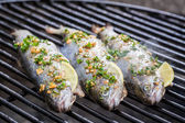 Baked fish with lemon and spices — Stock Photo