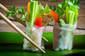 Closeup of spring rolls with vegetables — Stock Photo