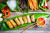 Fried spring rolls surrounded by ingredients — Stock Photo