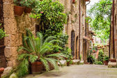 Tuscan Street in the city full of flowery porches — Stockfoto