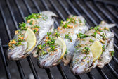 Grilled fish with lemon and spices — Stock Photo