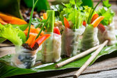 Fresh spring rolls wrapped in rice paper — Stock Photo