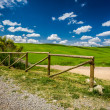 Old wooden fence, dirt road and green field — Stock Photo #51408221