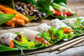 Spring rolls with vegetables and chicken — Foto Stock