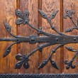 Metal ornament on wooden door — Stock Photo