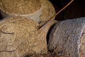 Straw roll — Stock Photo