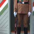 Hungarian guard — Stock Photo