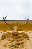 Deer head on wall — Stockfoto