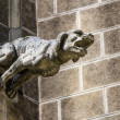 Stock Photo: Gargoyle at church of tomb