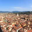 Cityscape of Florence — Stock Photo #37767557