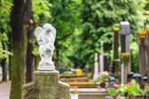White mourning angel — Stock Photo