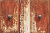 Metal door ornament detail — Stock Photo