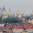 St. Petersburg harbor cranes — Stock Photo