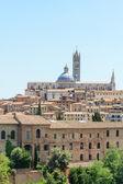 Siena cityscape — Stock Photo