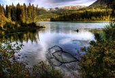 Kenai River in Fall — Stock Photo