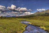 Alaskan lato — Zdjęcie stockowe