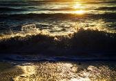 ловить волну — Стоковое фото