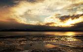 Tramonto dorato inverno — Foto Stock