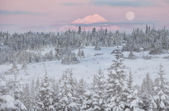 La luna al amanecer — Foto de Stock