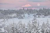 Maan bij zonsopgang — Stockfoto