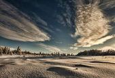 Alaska winter — Stockfoto