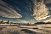 Alaska winter — Stockfoto