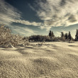 Deep snow on a sunny day — Stock Photo