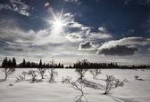 Sunburst med snö — Stockfoto