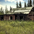 Abandoned Alaskan Cabin — Stock Photo