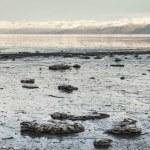 Frozen Alaskan Bay — Stock Photo