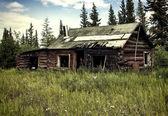 被遗弃的阿拉斯加小木屋 — 图库照片
