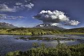 Yukon territory in summer — Stock Photo
