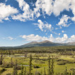 Yukon Territory Wilderness — Stock Photo #34915831