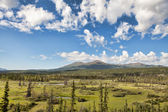 Yukon Territory Wilderness — Stock Photo