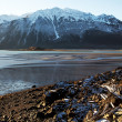 Stock Photo: Chilkat Inlet Beach in early winter