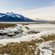 Stock Photo: Icy Alaskan Beah