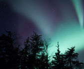 Alaskan northern lights — Stock Photo