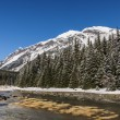 Chilkoot river in winter — Stock Photo