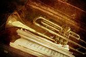 Old Trumpet — Stock Photo