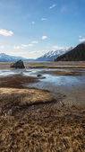 Low Tide Meandering — Stock Photo
