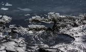 Melting ice — Стоковое фото